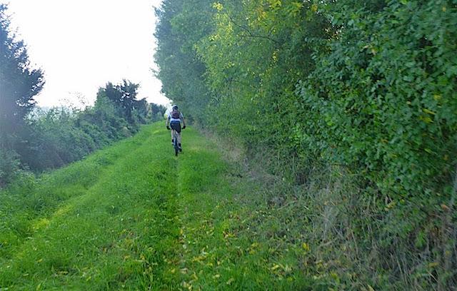 trails_1